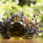 Le pouvoir des huiles essentielles contre le stress