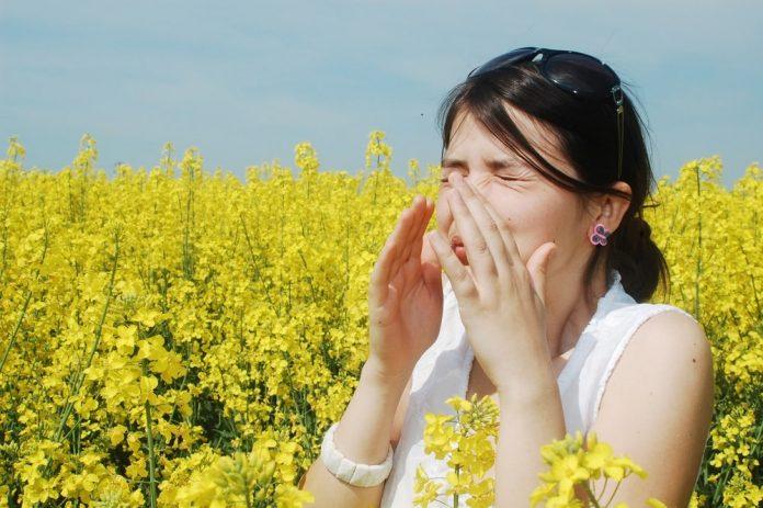 les symptômes de l'allergie au pollen